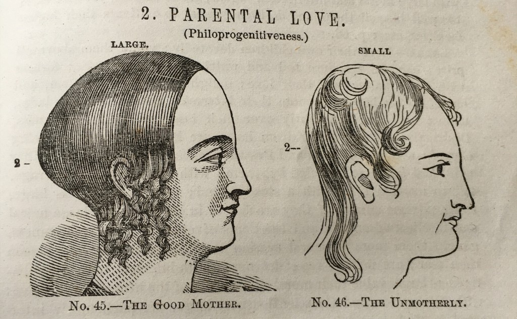 "Under the heading ""Parental Love: Philoprogenitiveness"" we see a ""Large"" curve of the head on the right attributed to ""The Good Mother"" and a relative lack of cranial curve attributed to ""The Unmotherly."""
